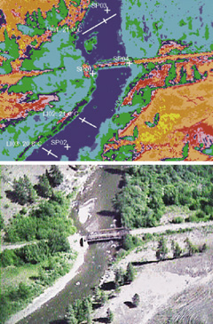 A thermograph of a section of the Coldwater River (with matching photograph below) illustrates dramatically the impact of the loss of vegetation along the banks. In the thermograph, yellow is 60 C, and temperatures drop through orange, red and pink to 40C, then through purple, green, light blue, dark blue and darker blue to 20C. Note the location of trees, and what a difference in temperature there is in their vicinity. Even the location of rocks in the river can be identified by their thermal signature. Where such man-made construction as roads occur, temperatures soar, and that's reflected on adjacent watercourses. Photo contributed